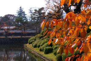 上杉神社周辺の様子